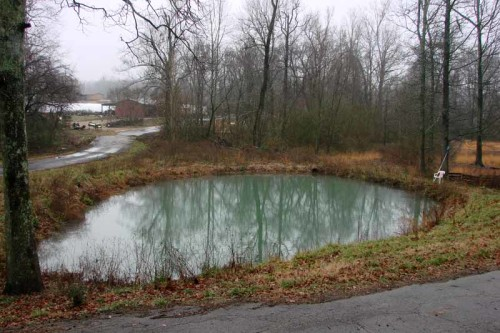 picture of pond