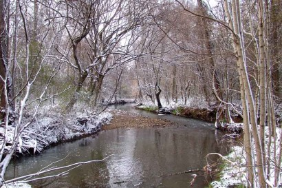 Creek and snowy trees.
