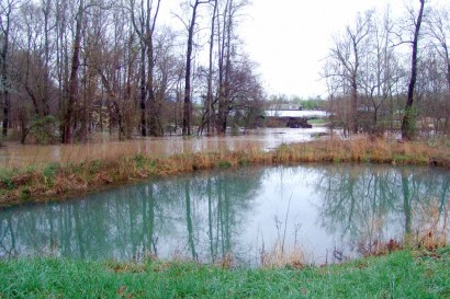 Flooded creek and pond.