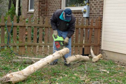 The Farmer cutting up a tree.