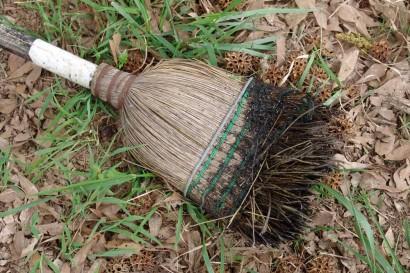 Burnt Broom