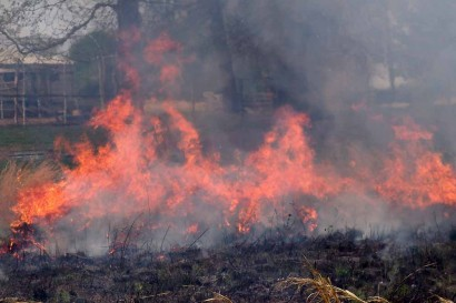Fire in bottom pasture.