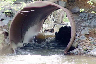 Large tree parts blocking flow of water through culvert.