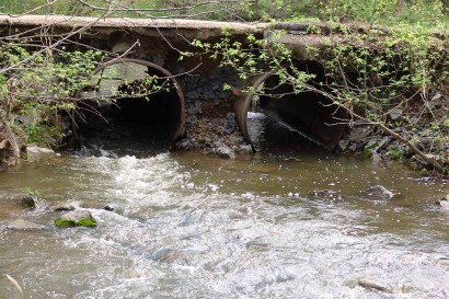 Water coming out the downstream side of the culverts.