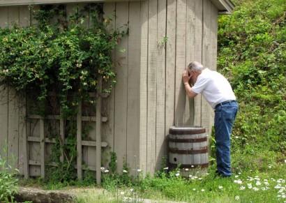 Farmer Peeking In Building