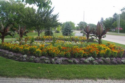 Flowers in park at Steinbach, Manitoba, Canada.
