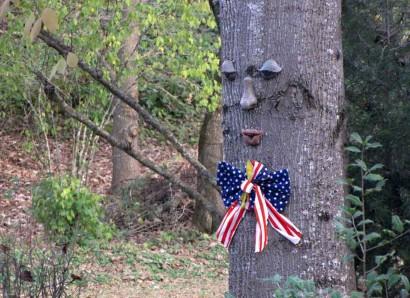 Patriotic Tree Face