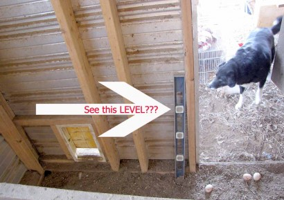 How fowl! There's a level in the poultry house.