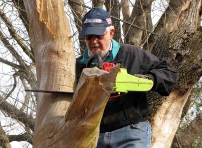 Lumberjack on the farm cutting down part of a tree.