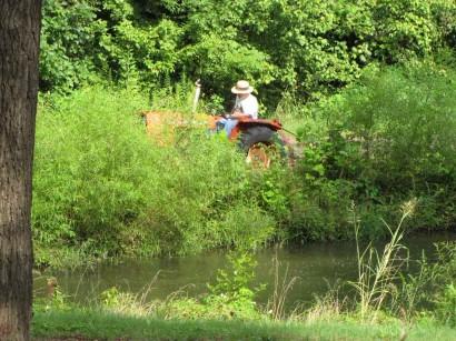 mowing pond banks