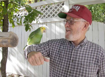 picture on yellow faced parrot on man's arm