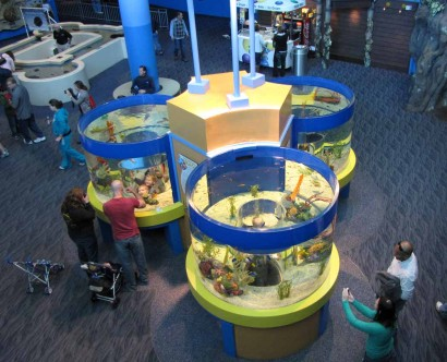 picture of kids area at Ripleys aquarium