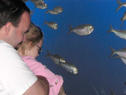photo of child looking at fish