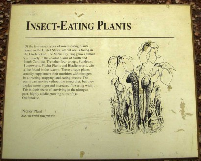 picture of insect eating plants sign