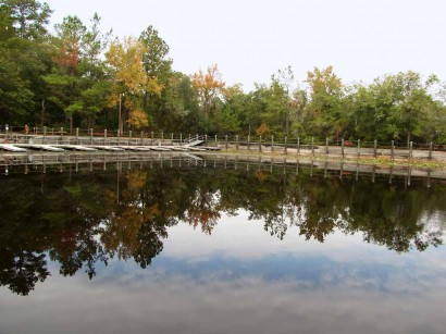 picture of trees reflected in water at Okefenokee swamp