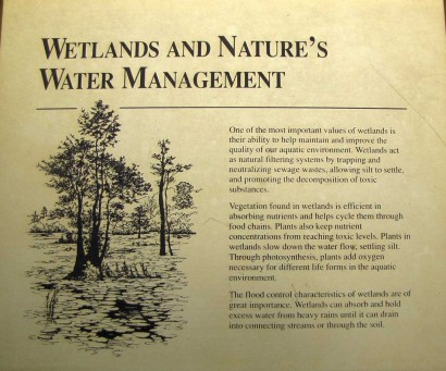 picture of wetlands management sign in Okenenokee Swamp