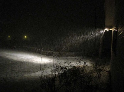 picture of snow falling at night