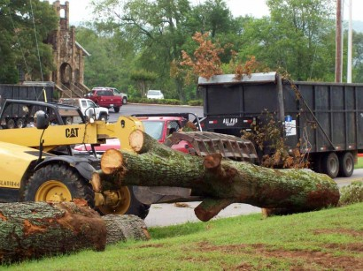 tornado aftermath - removing tree from ditch