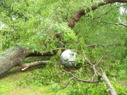 tornado aftermath - tree down on propane tank image