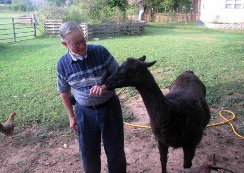 pic of man and llama