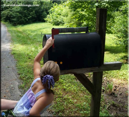 girl puts up flag on mailbox
